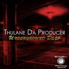 Thulane Da Producer - Thorn (Original Mix)
